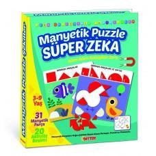 DiyToy Manyetik Puzzle Süper Zeka